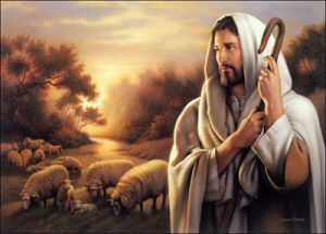 WSC Reflection for May 7, 2017